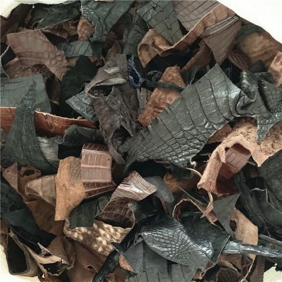 Crocodile skin scraps 0.5kg